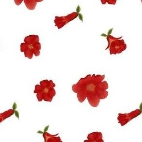 Pomegranate Flower Toss