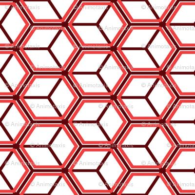 Honeycomb Motif 26