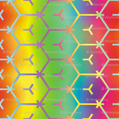 Honeycomb Rainbow 1