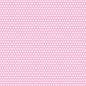 PolkaNos - Dots