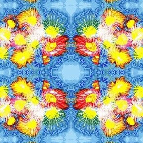 Gallaxy of Flowers