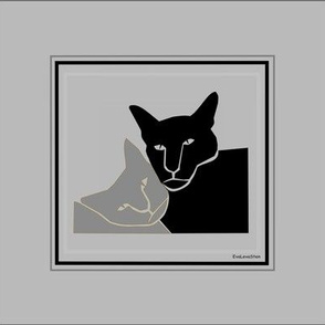 Two cats in grey