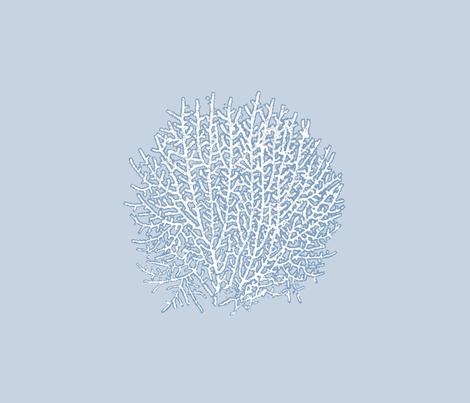 Sea Fan - Fat Quarter fabric by mandyd on Spoonflower - custom fabric