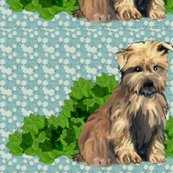 R1278733_glen_of_imal_terriers_shop_thumb