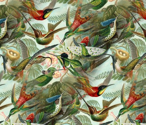 Rrhummingbirdpattern_shop_preview