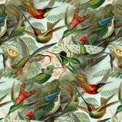 Rrhummingbirdpattern_shop_thumb