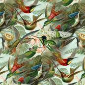 Vintage Hummingbird Pattern