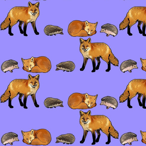 Hedgehog and Fox