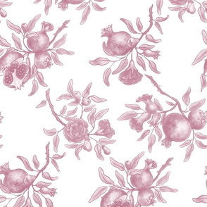 Pomegranate Trellis - Pink on White
