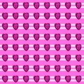 Rasberry_single_with_stripe_shop_thumb
