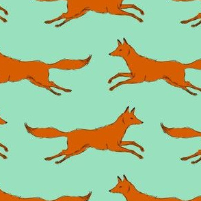 foxes run...