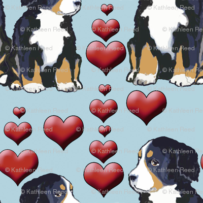 Bernese Mountain Dog Puppies and Hearts
