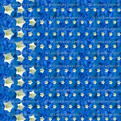 blue Tiny stars2