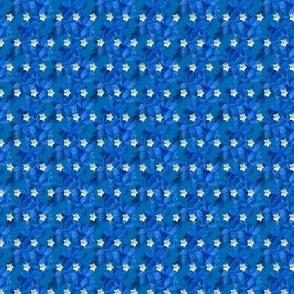 blue tiny stars