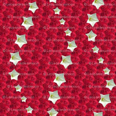 red star 4