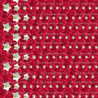 red Tiny stars 2