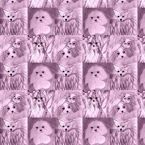 Lavender Dogs