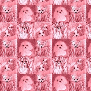 rose dogs