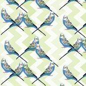 Rrrparakeets_ed_shop_thumb
