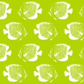 Rkiwi_tango_tight_2013_green_shop_thumb
