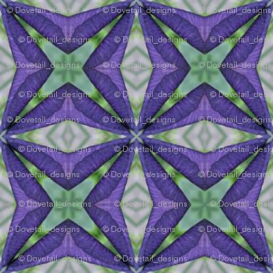 Iris Matrix: Flower symbols