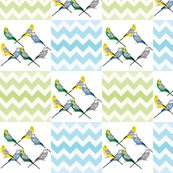 Rchevron-parakeets-multi_shop_thumb