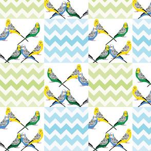 chevron-parakeets-multi