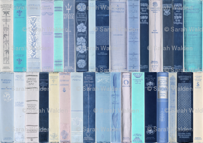 Madame Fancypantaloons' Instant Library Bindings ~ Blue