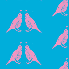 Pink Quail Couple Blue Background