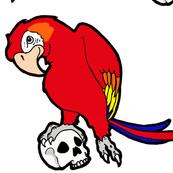 Parrot Skull