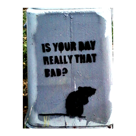 Rat Bad Day