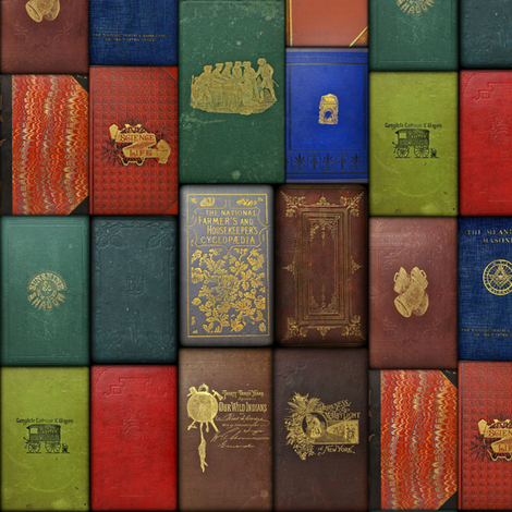 Mister Fancypantaloons' Instant Library ~ Covers fabric by peacoquettedesigns on Spoonflower - custom fabric