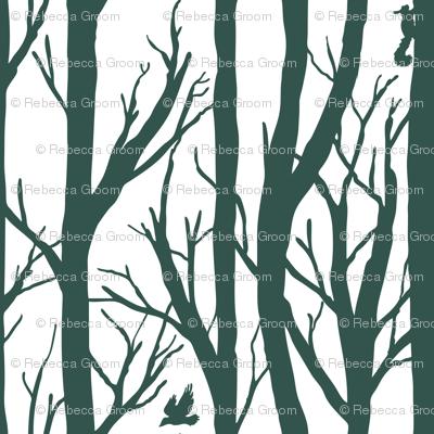 Winter Forest Habitat