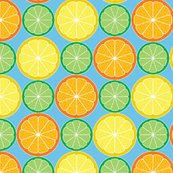 Rrrrrcitrus_slices_shop_thumb