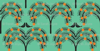 Orange Grove 4