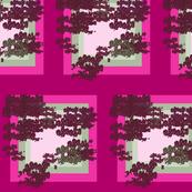pomegranate in square