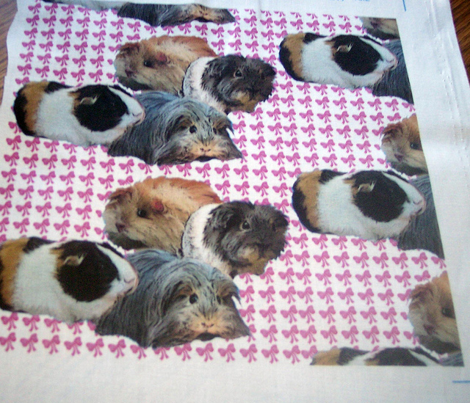 Rrr1303493_rrguinea_pig_fabric_comment_285261_preview