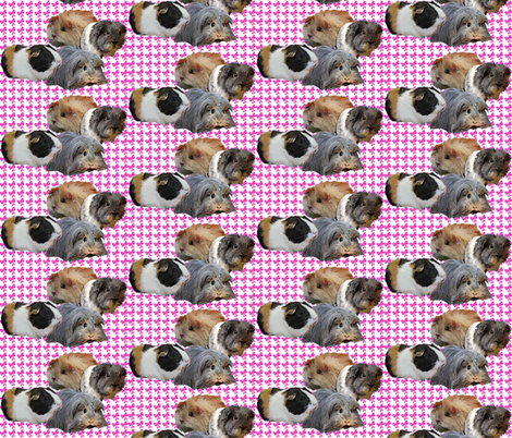 Guinea Pigs and Pink bows fabric by dogdaze_ on Spoonflower - custom fabric
