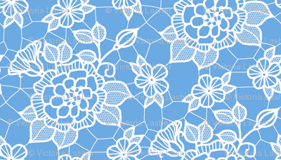 White lace flower on blue