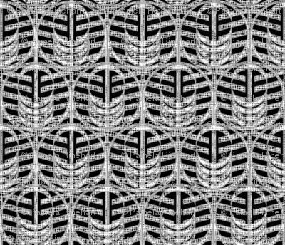 FOREST WINDOW xray-ed