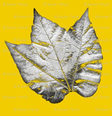 leaf_range-ch