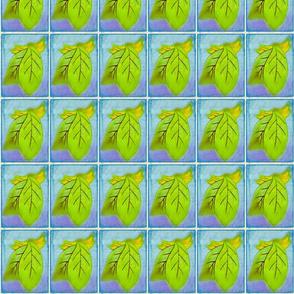 Banana Leaf #2