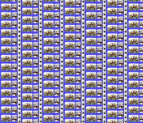 Rrrpicmonkey_collage_ed_ed_ed_ed_ed_shop_preview