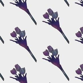 Galaxy Tulips