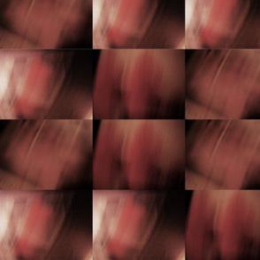 2011-01-24_002