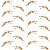 Hares_pattern_white_copy_shop_thumb
