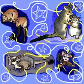 Nighttime_possum_collage_shop_thumb