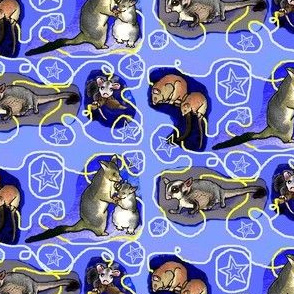 Nighttime Possum Collage