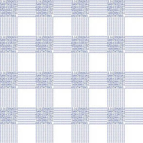 "blueberry pi - gingham (1"" check)"