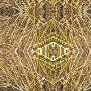 Bamboo Mandala